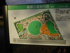 当初武蔵野の森をコンセプトに設計されたが、子どもたちが遊べる遊具がほしいという声を受けて公園が拡張される際にアスレチックや土管のトンネル、コロコロ滑り台などが追加された、
